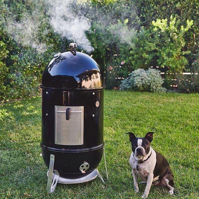 בישול טבעוני במעשנת בשרים